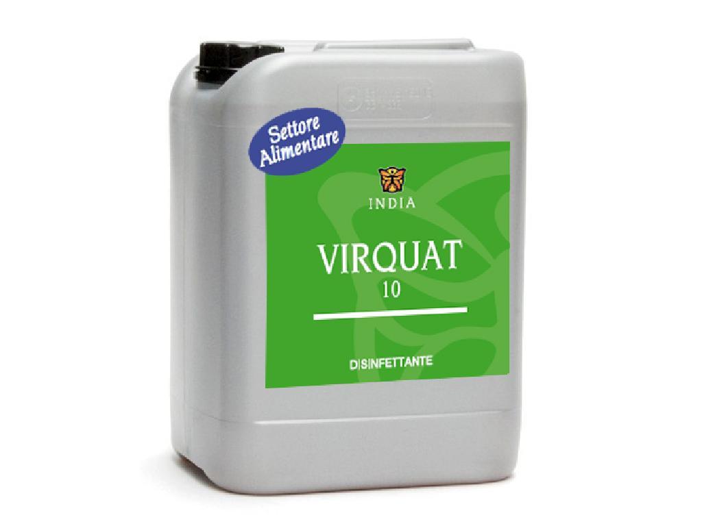 VIRQUAT 10 Disinfettante - antimuffa concentrato